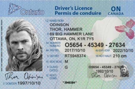 Kanada'da Nasıl Ehliyet (Driving License) Alabilirim?