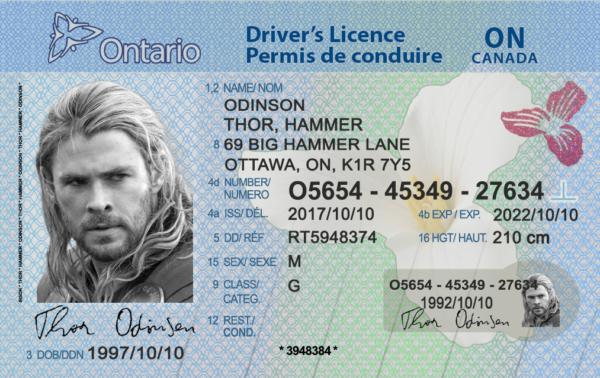 Kanada'da Nasıl Ehliyet (Driving License) Alabilirim? 1