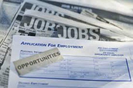 İş Bulmak için Tipi Bir Özgeçmişi Nasıl Oluşturabilirim?