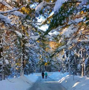 Toronto'dan 10 Kolay Kış Kaçamağı 5