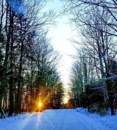 Toronto'dan 10 Kolay Kış Kaçamağı 8